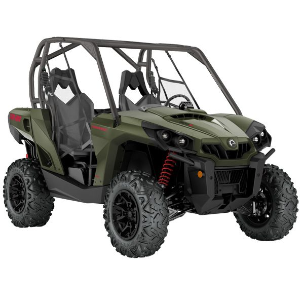 Commander DPS Buggy For Sale Perth